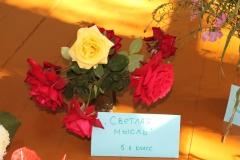 konkurs-buketov-2015-03